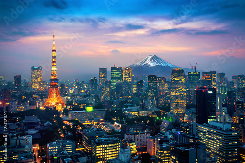 Aerial view of Tokyo cityscape with Fuji mountain in Japan. Wallpaper Mural