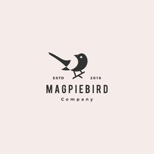 Magpie Bird Logo Hipster Retro Vintage Vector Icon Illustration