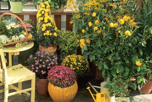 Poster de jardin Dahlia Fleurs d'automne sur un balcon