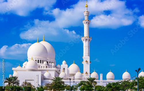 Sheikh Zayed Grand Mosque in Abu Dhabi, United Arab Emirates Canvas Print