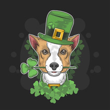 ST PATRICKS DOG DAY