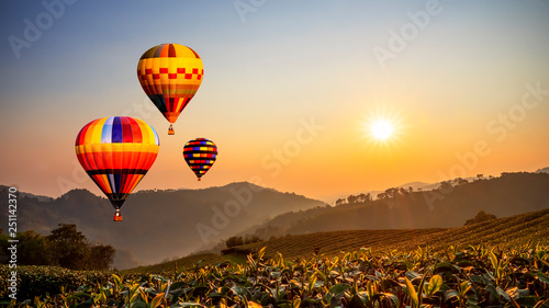 Poster Montgolfière / Dirigeable Colorful hot air balloon fly over tea farm with sun rise 1