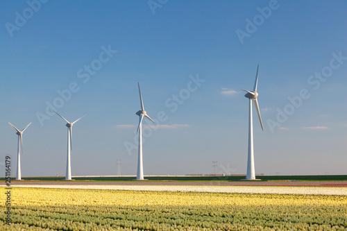 Fotografia  Wind farm