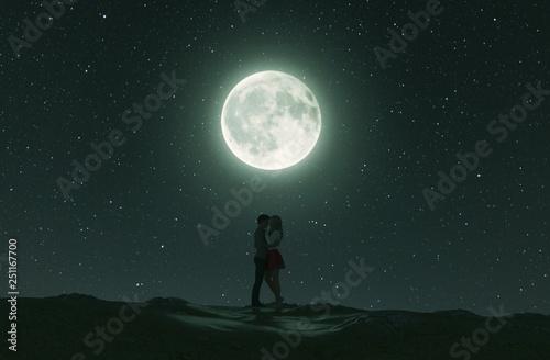 Poster Pleine lune Love couples under the moonlight,3d rendering