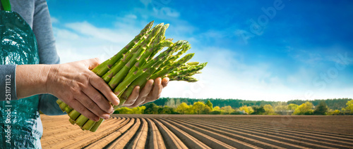 Photo Bundle of green asparagus in hands of farmer
