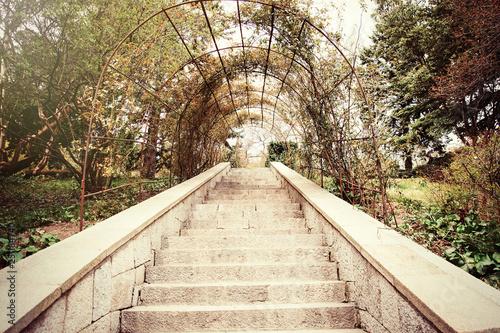 La pose en embrasure Route dans la forêt Steps in the park