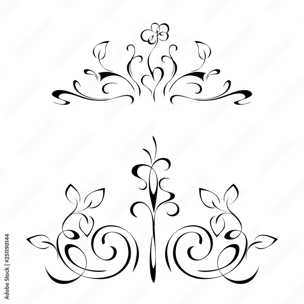 symmetrical ornament with flowers and leaves in black lines on a white background