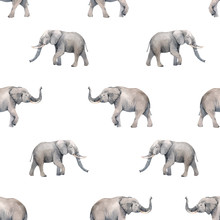 Watercolor Elephant Seamless Vector Pattern