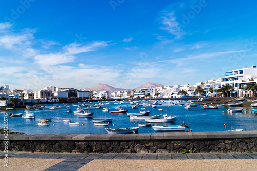 Garden Poster Napels Arrecife Lanzarote