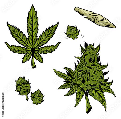 Fototapeta cannabis marijuana set