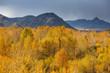 Mountain view autumn landscape of Western Mongolia.