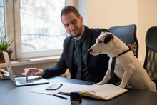 Happy Businessman Working On Laptop In Office Sitting Next To Dog With A Tie