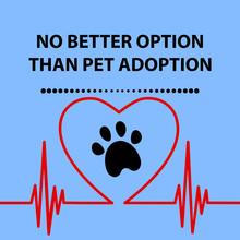 No Better Option Than Pet Adop...
