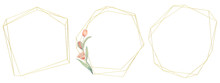 Set Of Watercolor Tulips Frame...