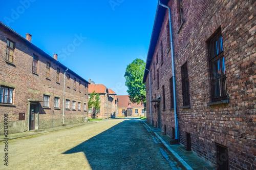 Fotografie, Obraz  AUSCHWITZ, POLAND, 16 JULY 2018: Habitation blocks of the concentration camp