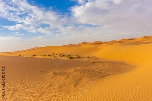 Foto op Aluminium Koraal Beautiful landscape of the dunes in the Sahara Desert, Merzouga, Morocco