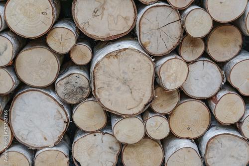 Cuadros en Lienzo sawed ends of a pile of birch firewod