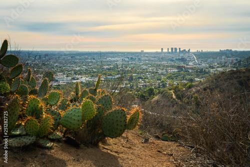 Photo  Beautiful view of Santa Monica city from Runyon Canyon Park