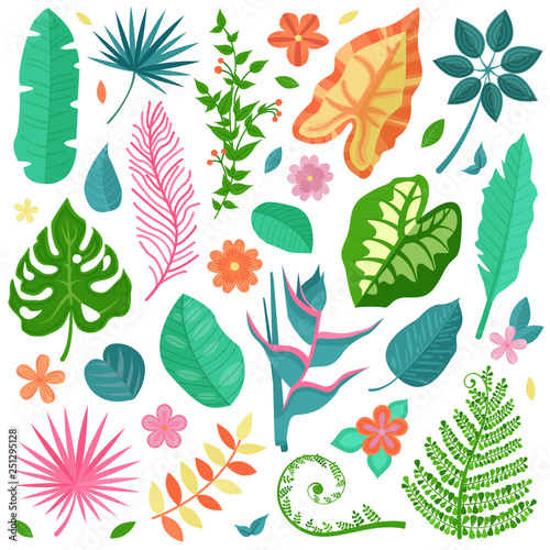 Collection of tropical decorative leaves and flowers, banana palm branches, exotic rainforest plants. Botanical illustration set with summer Hawaiian paradise plant elements and jungle floral foliage.