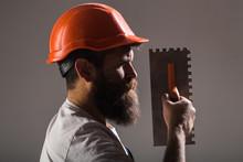 Tool, Trowel, Handyman, Man Bu...