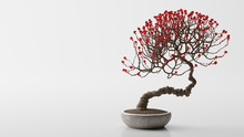 Red Bonsai On A White Background