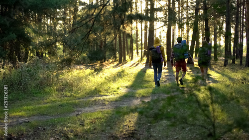 Fotomural Friends with rucksacks hiking in woods, active lifestyle, pov of criminal danger
