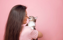 Cat Licks Girl Nose, Young Attractive Woman Hugging Cat In Hands, Pink Background