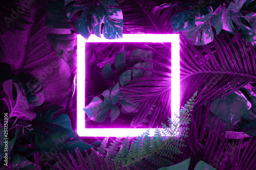 Photo  Creative fluorescent color layout made of tropical leaves with neon light square