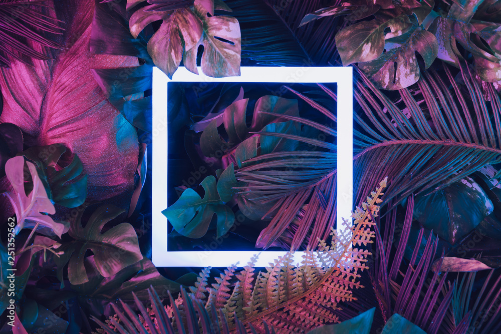 Fototapety, obrazy: Creative fluorescent color layout made of tropical leaves with neon light square. Flat lay. Nature concept.
