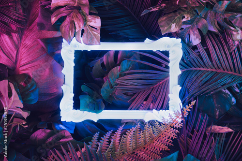 Creative fluorescent color layout made of tropical leaves with neon light vintage frame Slika na platnu