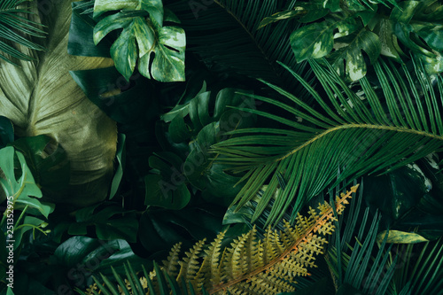 Obraz Creative layout made of tropical leaves. Flat lay. Nature concept. - fototapety do salonu