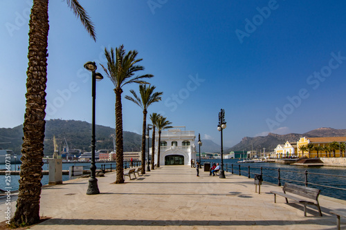 Line of palm trees - seaside boulevard in Cartagena, Murcia region