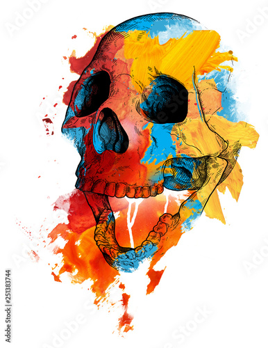 Canvas Prints Watercolor Skull Memento mori skull