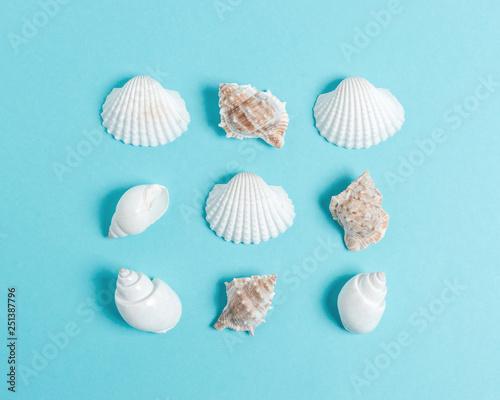 Fotografie, Obraz  Creative seashell pattern on pastel blue background