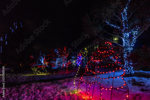 Christmas In Calgary Canada.Zoo Lights Heralds The Christmas Season Calgary Alberta