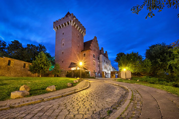 Poznan, Poland. View of Royal Castle at dusk