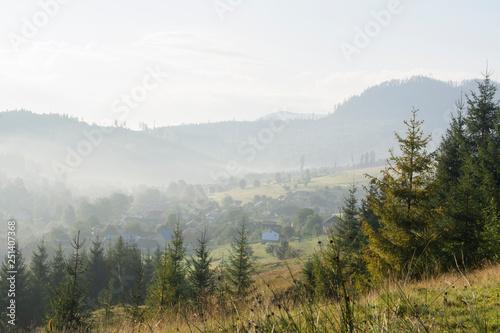 Fototapeten Wald Morning misty landscape: mountain village, mountain slopes, forest.