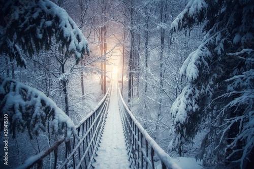 Spoed Fotobehang Weg in bos Im verschneiten Winterwald hängt eine Seilbrücke. Verschneite Tannenbäume säumen den Pfad. Brücke vom Rothaarsteig im Sauerland.