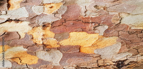 Multi Layered Multi Colored Wooden Background The Texture Of