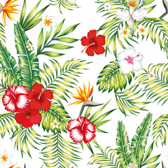 Seamless realistic vector botanical pattern white background