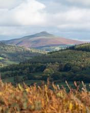 Brecon Beacons Countryside