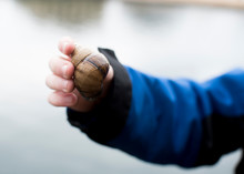 Cropped Hand Of Child Holding Snail Against Lake