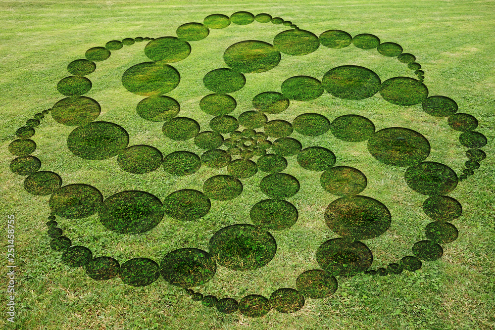Fototapety, obrazy: Concentric circles spirals encrypted symbols fake crop circle in the meadow