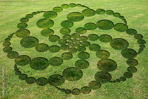 Fotografie, Obraz  Concentric circles spirals encrypted symbols fake crop circle in the meadow