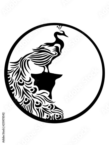 Fotografía  rund mond klippe nacht sonne kreis dekorativ vogel silhouette umriss schatten pf