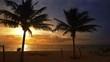 Mayan Riviera palm trees beach sunrise Caribbean