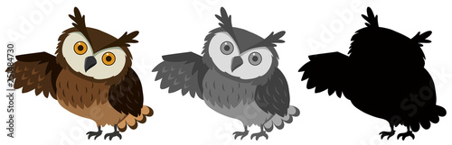 Aluminium Prints Owls cartoon A set of owl character