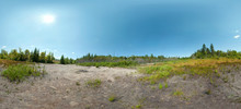 HDRI. Wild Landscape In Canada. Forest Trees In Summer With A Desert Field Of Grass And Bushes In Front. Row Of Trees On The Horizon And Blue Sky In Background. Large Panoramic Landscape. HDR Image