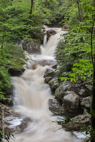 waterfall in woods forest