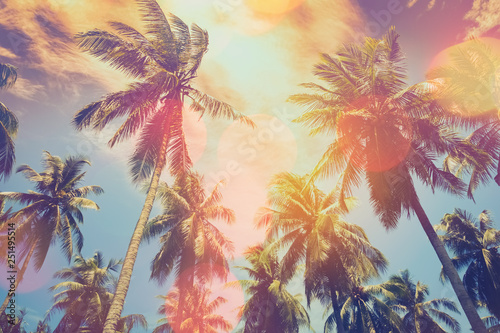 Staande foto Bomen Tropical palm tree with colorful bokeh sun light on sunset sky cloud abstract background.